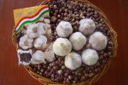 BUGAR Évelő fokhagyma szaporítóanyag